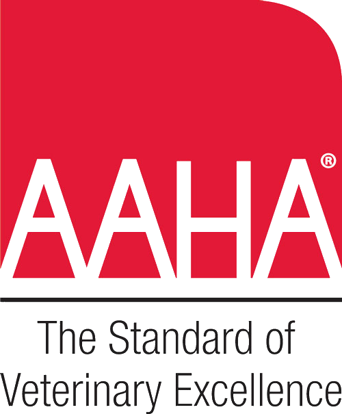 AAHA reaccreditation